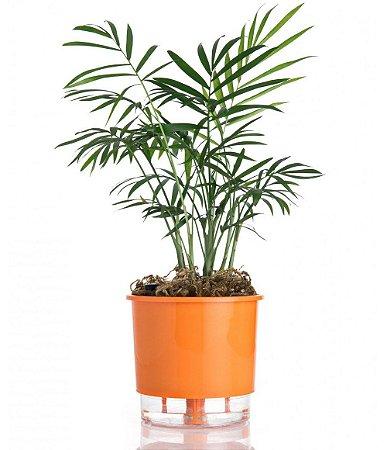 Vaso p/ Plantas Autoirrigável Tamanho Médio 16x14