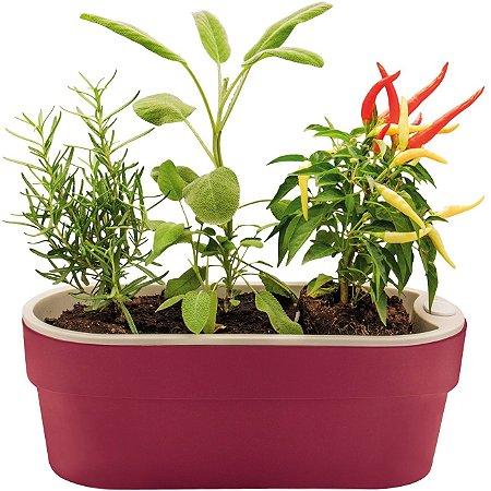 Vaso Jardineira Horta p/ Plantas Autoirrigável