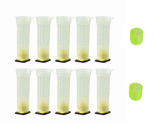 Gaiola De Produção De Abelha Rainha - 10 unidades + 10 cupulas