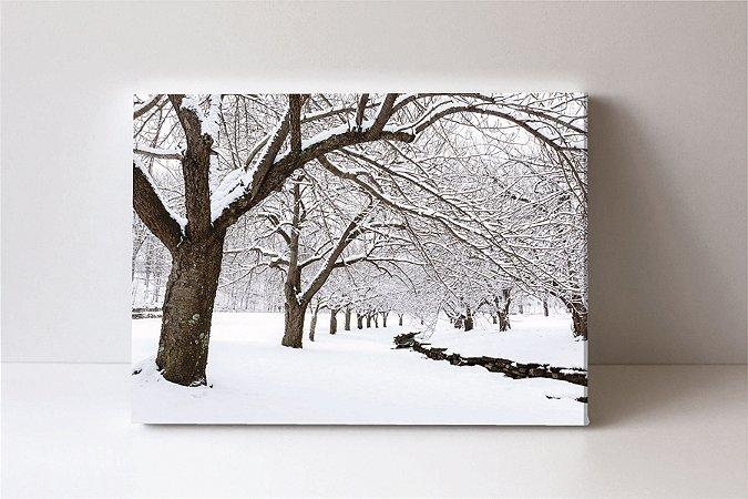 Quadro em Canvas inverno