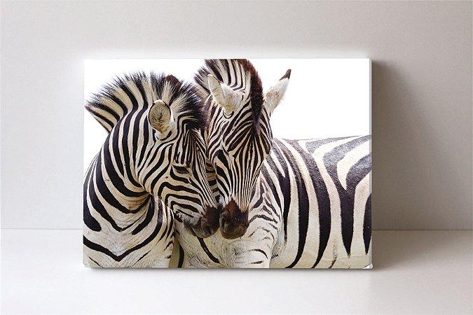 Quadro em Canvas Zebra
