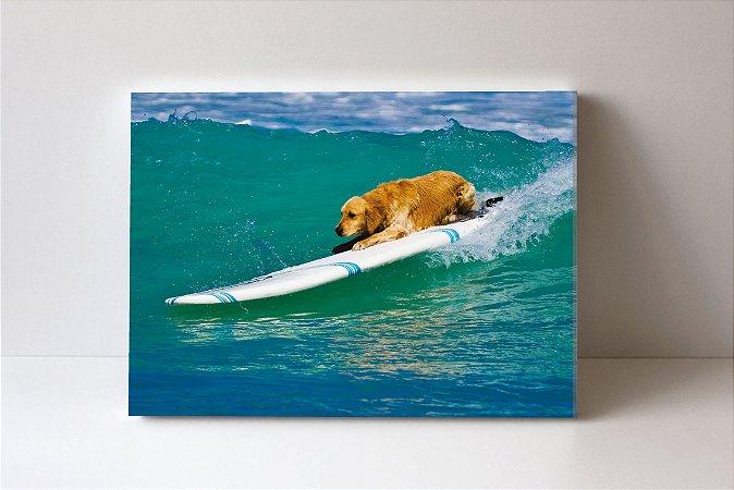 Quadro em Canvas Gonden Surf