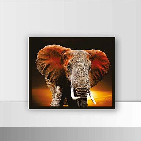 Quadro 26 x 31 Elefante