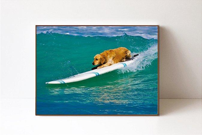 Quadro em Canvas Cachorro Surfando