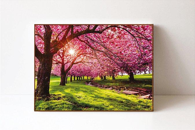 Quadro em Canvas Primavera Cerejeira