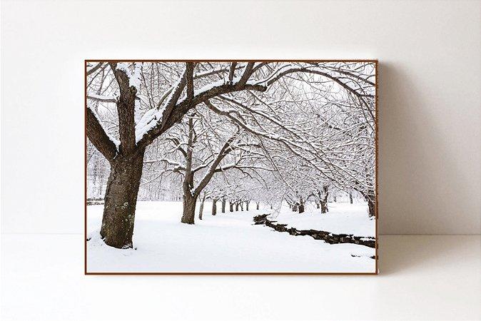 Quadro em Canvas Inverno Cerejeiras