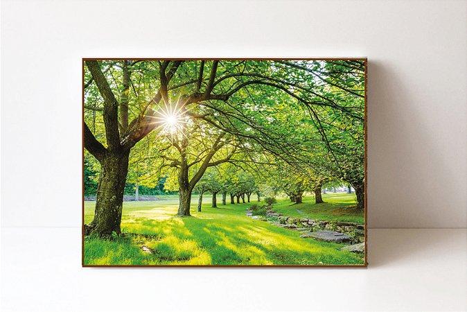 Quadro em Canvas Outono Cerejeira