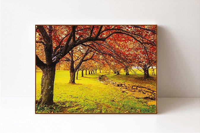 Quadro em Canvas Cerejeira Verão