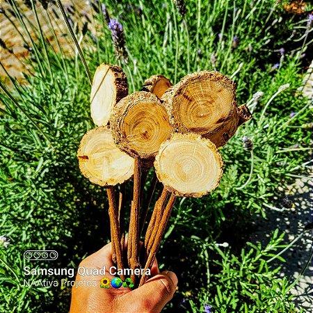 15 Plaquinhas de madeira para identificação de Plantas.
