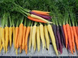 Cenoura Mix 500g - cores variadas