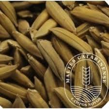 Malte Catarinense Arroz 100g
