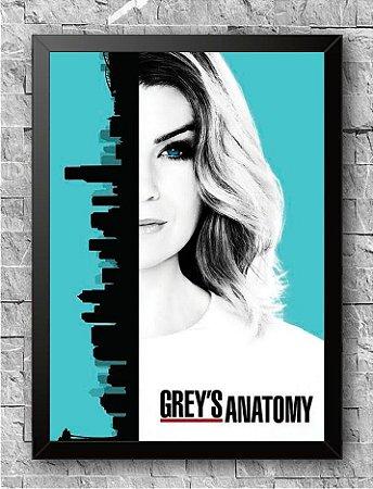 Quadro Grey's Anatomy (1)
