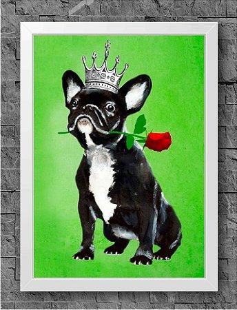 Quadro Dog (6)
