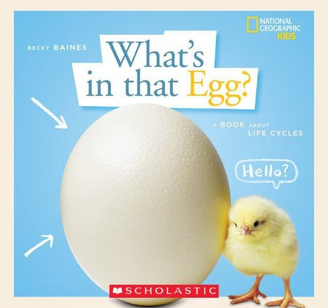 WHATS IN THAT EGG - A BOOK ABOUT LIFE CYCLES