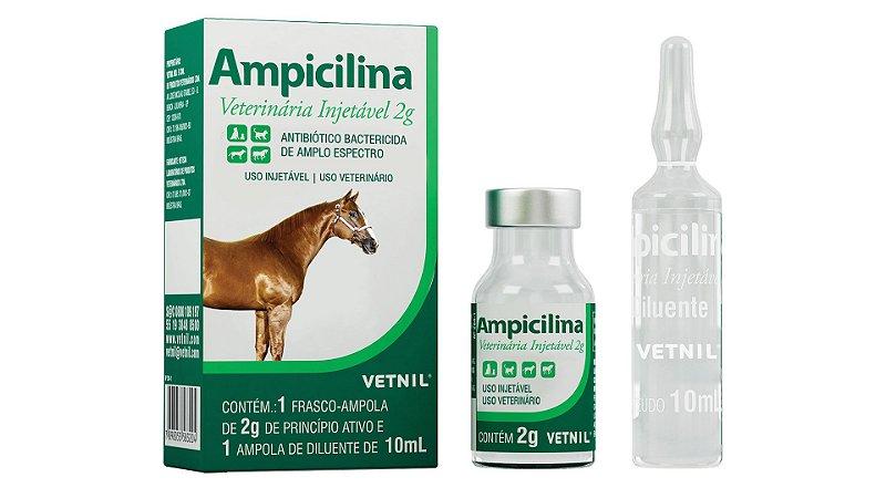 AMPICILINA VETERINARIA INJETAVEL 2 G