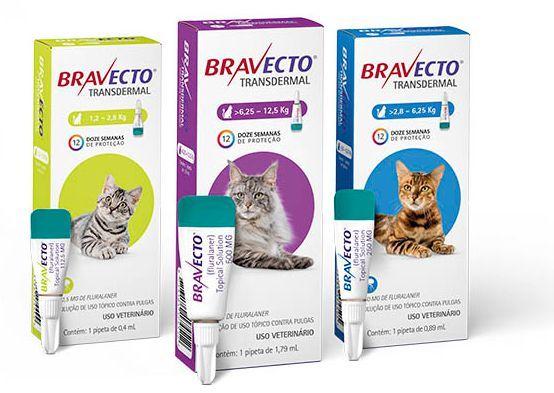 Antipulgas MSD Bravecto Transdermal para Gatos