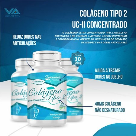 Colágeno Tipo II (Com vitamina E)