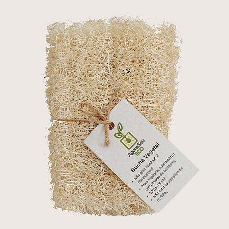 Bucha vegetal - esponja ecológica