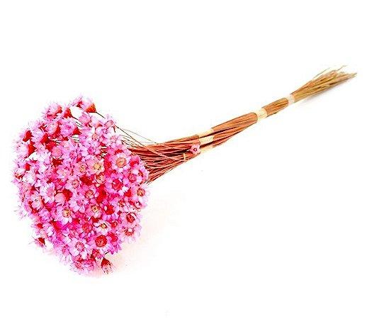 Ramo Sempre-Viva Rosa