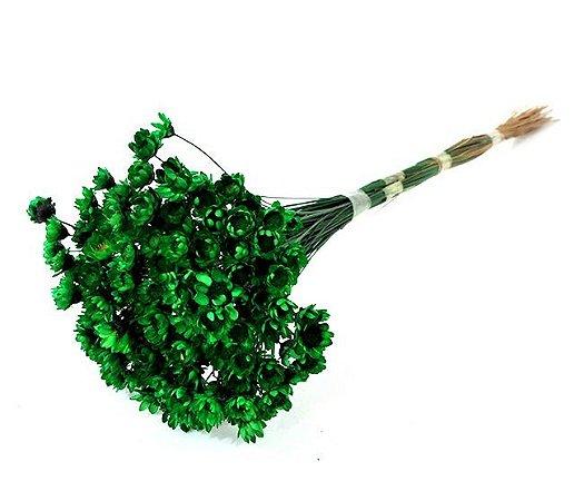 Ramo Sempre-Viva Verde Escuro