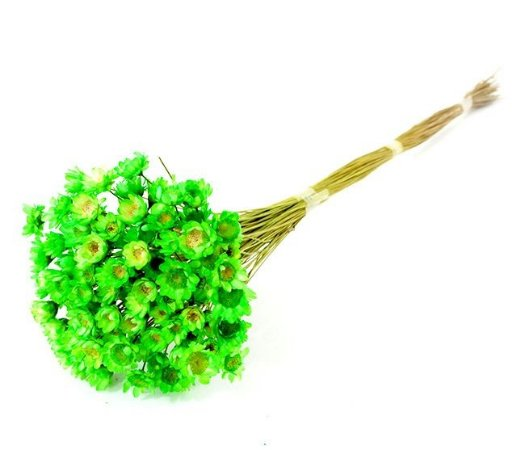 Ramo Sempre-Viva Verde