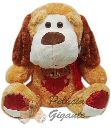 Cachorro com Coração e Ursos Bordados na Barriga