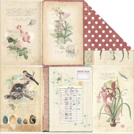 Papel Scrapbook - Garden Journal - Bo Bunny