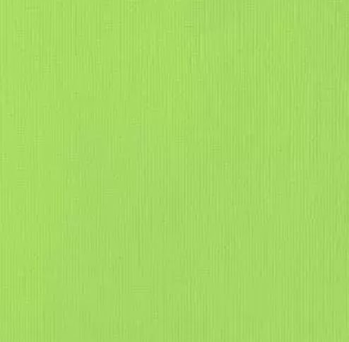 Cardstock - Papel de Scrapbook 30,5x30,5 cm -Verde - Key Lime  - American Crafts