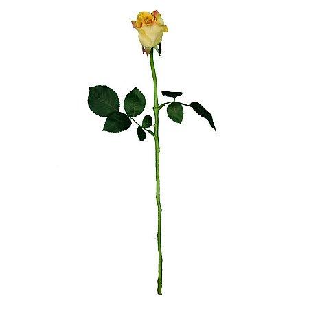 Galho de Rosa Celia