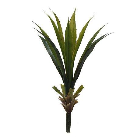 Buquê De Folhas de Aloe