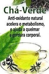 Chá Verde (Caméllia sinensis) 500mg