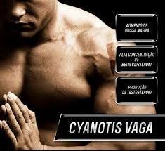 Cyanotis Vaga 200Mg