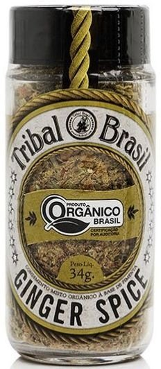 Ginger Spice - Condimento Misto Orgânico 34g - Tribal