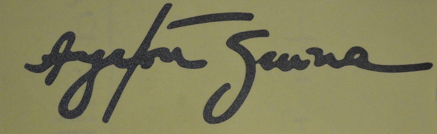 adesivo Refletivo Assinatura Airton Senna