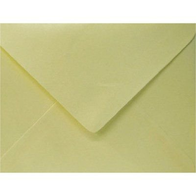 Envelope 80g visita 115x80 berilo 66R Romitec - 10 unidades