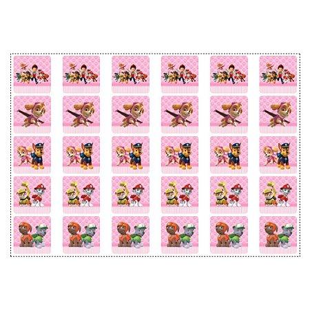 30 Adesivos Patrulha Canina Rosa para Lembrancinha Quadrado 3,7cm