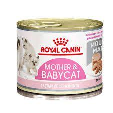 ROYAL CANIN MOTHER E BABYCAT 195G