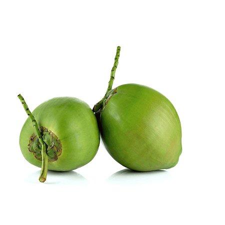 Coco Verde 1 Unidade