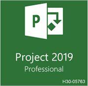Microsoft Project Profissional 2019 H30-05763