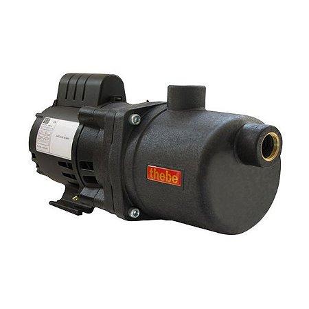 Bomba de Água APP-13 1/2CV 127/220/254V Com Motor Thebe