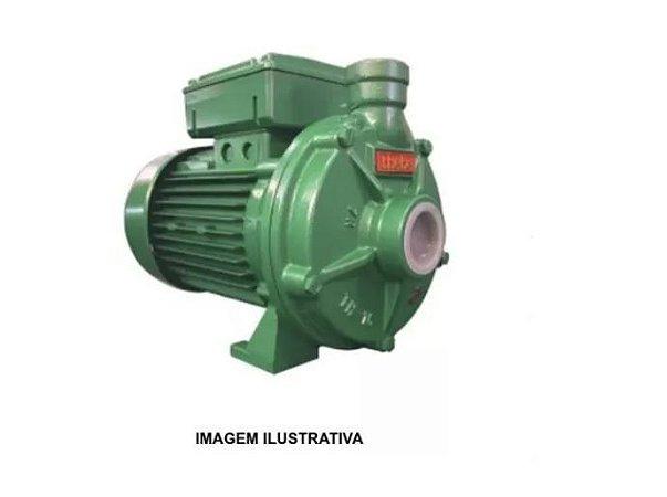 Bomba Centrifuga Th-16 Nr 3 cv IP55 Thebe Monofasica 127/220/254V