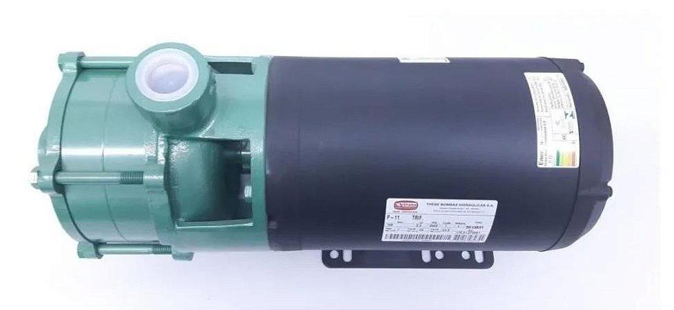 Bomba Superficial Solar Thebe P-11/3 NR IP21 2,0 cv Motor Nova Trifasico