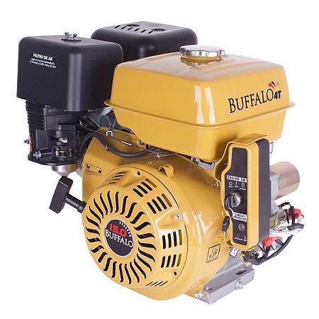 Motor a Gasolina BFG/BFGE 15cv Buffalo