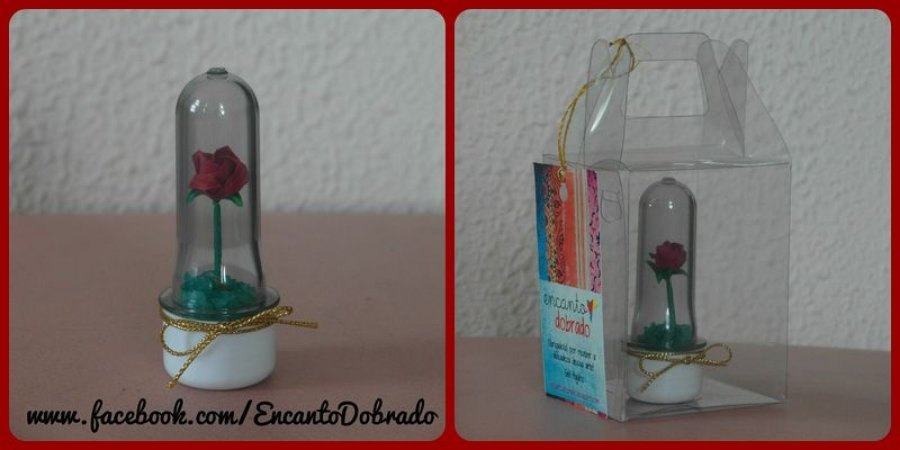 Mini Rosa na Redoma