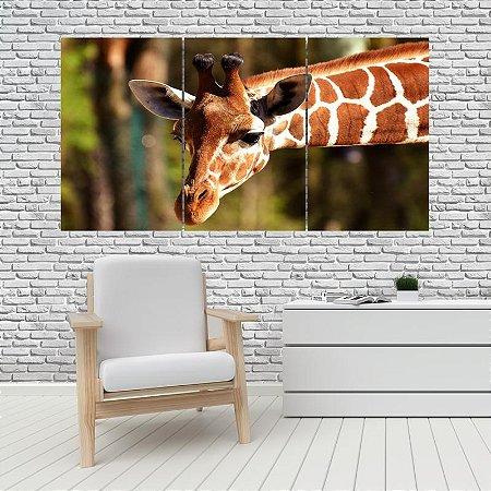 Quadro Mosaico Decoração Animal 121x65 com 3 Peças Mod 12