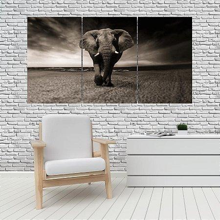 Quadro Mosaico Decoração Animal 121x65 com 3 Peças Mod 14