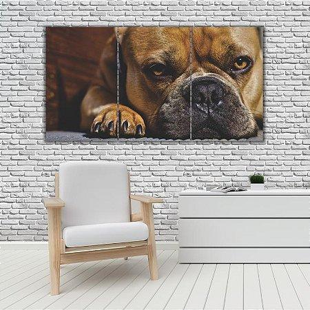 Quadro Mosaico Decoração Animal 121x65 com 3 Peças Mod 52
