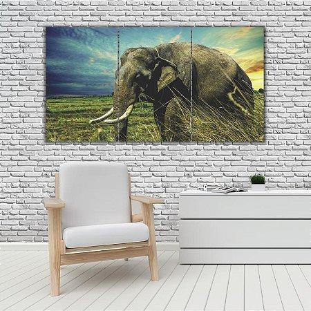 Quadro Mosaico Decoração Animal 121x65 com 3 Peças Mod 65