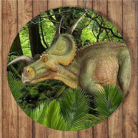 Painel Tecido Redondo Dinossauro Decoração Festa 04