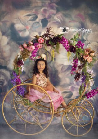 Carruagem Criança Fotografia Decoração Ensaio Foto Princesa Festa ArteBrasil